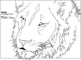 Small Picture Male Lion Head coloring page Free Printable Coloring Pages