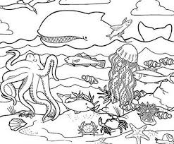 Vector illustration of animal coloring page. Coloring Pages Of Sea Animals Coloring Home