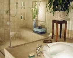 Decorative Bathroom Shelving Bathroom Extraordinary Bathroom Shower Ideas With Recessed