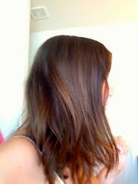 shampoo bar and acv rinse for hair