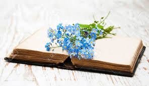 bunch of forget me nots flowers and very old book stock photo 35588723