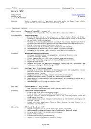 Old Resume Format Resume Peppapp