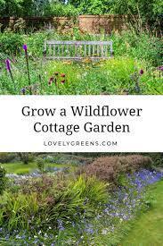 a wildflower cottage garden