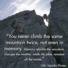 Quotes About Climbing Amazing 48 Best Rock Climbing Quotes On Pinterest Climbing Quotes Rock