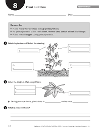 Photosynthesis Worksheet Pdf Free Worksheets Library | Download ...