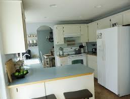 Kitchen Light Covers Kitchen Light Fixture Cover Fixtures Light Screw In Glass Pendant