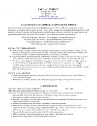 resume profile statement examples volumetrics co resume profile examples of professional strengths resume profile sample statements resume profile sample customer service resume profile samples