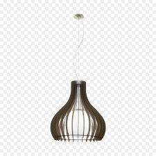light fixture pendant light lighting diffuser light collection
