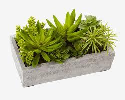 Concrete Rectangular Planter