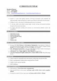 Delighted Good Pet Sitter Resume Images Example Resume And