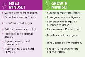 Image result for fixed mindset growth mindset