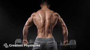 12 week lean muscle growth workout plan