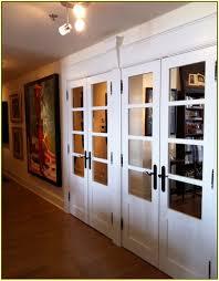 Mirrored French Closet Doors Home Design Ideas