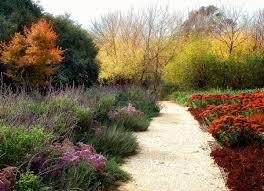 Small Picture Drought Tolerant Garden Design