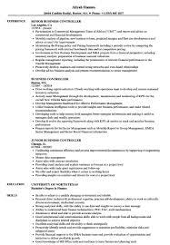 Junior Business Analyst Resume Sample. Junior Business Analyst ...