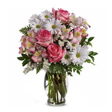 white daisies pink rose bouquet a bouquet of daisies