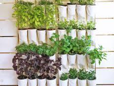 12 Easy Container Garden Ideas For Every Outdoor Space  Small Container Garden Ideas Photos