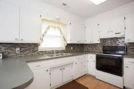 Should I Paint My Kitchen Cabinets White Impressive Decorating Design
