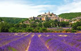 A guide to visiting the Provence <b>lavender fields</b> - Rough Guides ...