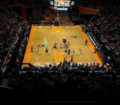 Thompson Boling Arena Section 313 Tennessee Volunteers