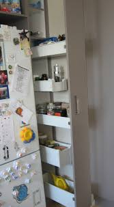 Kitchen Pantry For Small Kitchens 1000 Images About Kitchen Pantry Small On Pinterest Pantry