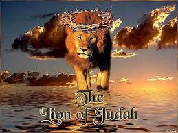 Image result for lion of judah