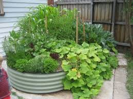 Small Picture Edible Garden Ideas Edible Gardens In Small Urban Spaces