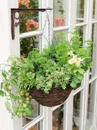 Hanging Herb Garden Kitchen How To Grow Herbs And Vegetables In A Hanging Basket How Tos Diy