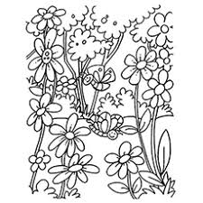coloring pages for kids flowers. Brilliant Pages The Blooming Flowers Coloring Pages In For Kids A