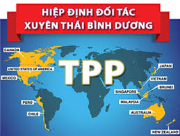 Image result for Hiep Dinh Song Phuong WTO