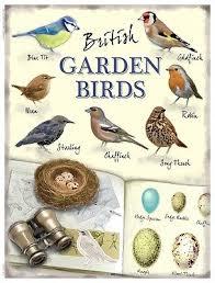 British Garden Birds Chart New 15x20cm British Garden Birds Robin Wren Retro Small Metal Wall Chart Sign Ebay