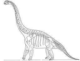 Dinosaur Skeleton Coloring Pages Skeleton Pictures To Color Skeleton