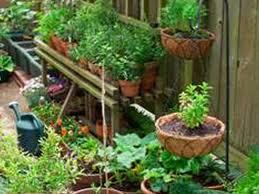 Small Picture backyard 57 Small Backyard Vegetable Garden Small Vegetable
