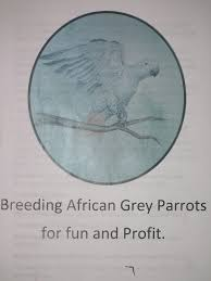 Download Breeding African Grey Parrots For Fun And Profit
