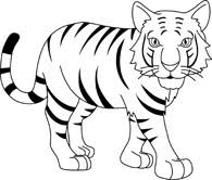 baby tiger clipart black and white. Exellent Tiger Strippedbengaltigerblackwhiteoutline914 Stripped Bengal Tiger Black  White Outline Size 67 Kb From Animals To Baby Tiger Clipart Black And White L