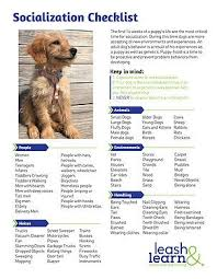 Puppy Socialization Checklist By Leash And Learn Service