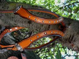 this set consists of a double ear no tooling with spots headstall matching spur straps and dog collar