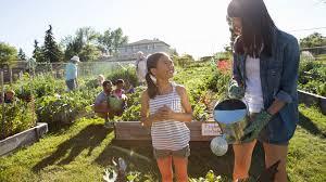 discover urban gardening