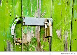 Green Garage Door Lock Photo