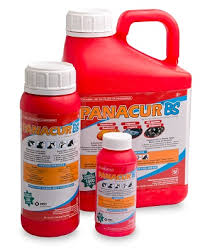 Products Panacur Bs Product Details