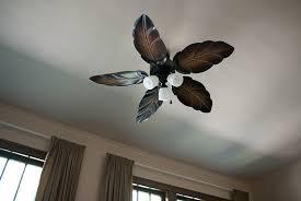 living room fans. the living room fans