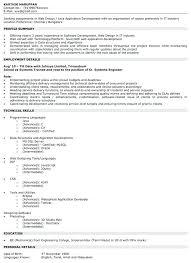 Piping Designer Resume Sample Beauteous Design Resume Examples Download Web Designer Resume Samples Interior