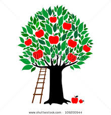 apple tree illustration. apple tree isolated on white background. vector illustration shutterstock
