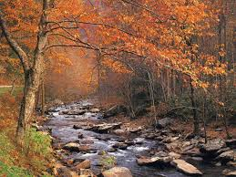 Image result for scenes of autumn