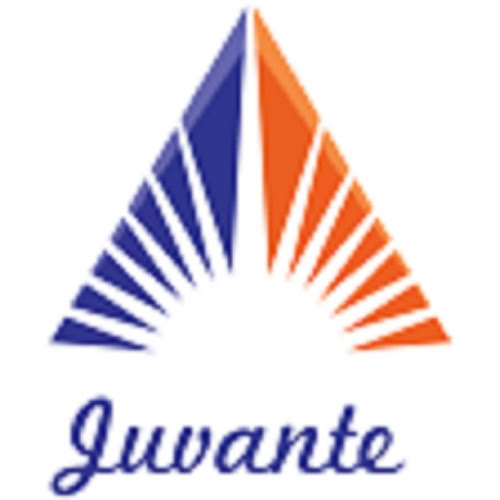 Juvante Group Business Executive Job Recruitment