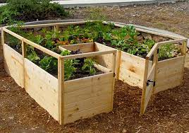 raised garden bed kit 8 x 8 outdoor
