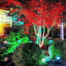 landscape lighting trees. Contemporary Trees Outdoor Landscape Lighting For Trees Ideas Elegant  Led And Intended Landscape Lighting Trees