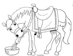 Index Of Coloriages Animaux Chevaux