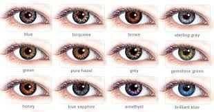 Different Shades Of Blue Eyes Chart Freshlook Colorblends Dailies Contacts In 2019 Colored