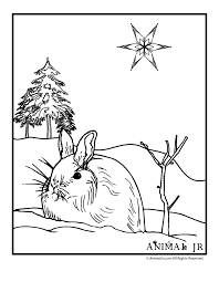 winter animals coloring page free printable coloring pages kids coloring pages winter animal coloring pages animal jr coloring pages for kids